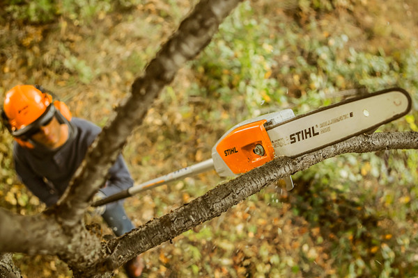 Stihl | Pole Pruners | Battery Pole Pruners for sale at Phillips Equipment Corporation, Virginia