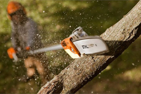 Stihl | Pole Pruners | Homeowner Pole Pruners for sale at Phillips Equipment Corporation, Virginia