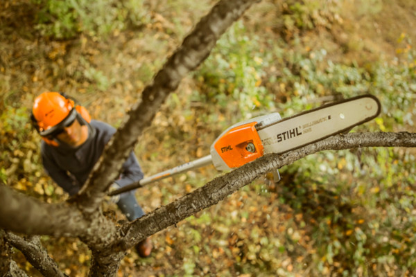 Stihl | Pole Pruners | Pole Pruner Accessories for sale at Phillips Equipment Corporation, Virginia