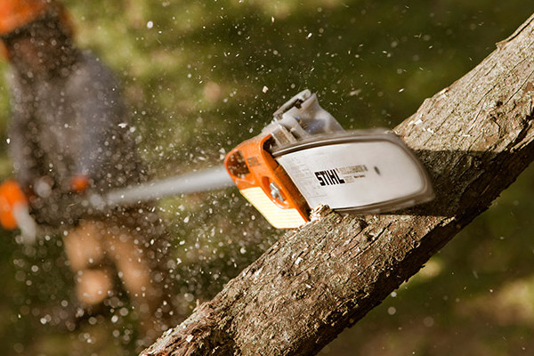 Stihl | Pole Pruners | Professional Pole Pruners for sale at Phillips Equipment Corporation, Virginia